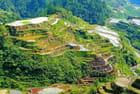 Ces rizières ont plus de 2000 ans...