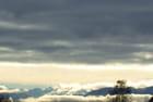Chartreuse nuageuse