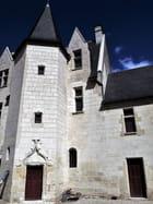 Château de Palluau-Frontenac XI-XVI s