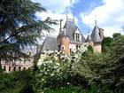 Château de saint-florent-sur-cher