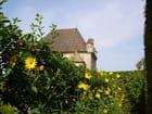 Chateau et les fleurs