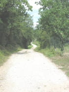 Chemin blanc