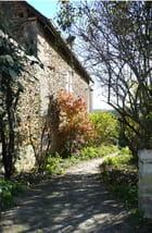 Chemin dans un jardin en automne