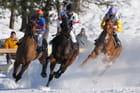 Chevaux au gallop sur la neige