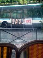Cinéma sous la pluie...