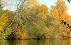 Comme un vent d'automne sur l'Aisne...