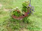 Contenants pour fleurs