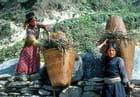 Corvée de bois au Langtang