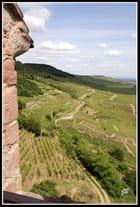 Côtes de Kaysersberg...