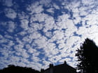 Coton de nuage