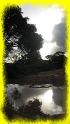Coucher de soleil sur Javouhey