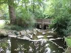 Cours d'eau + pont