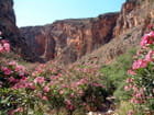 Crète - vallée des morts