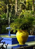 Dans las jardins de Majorelle