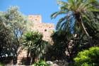 dans le jardin de La Alcazaba
