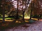Début d'automne.