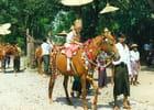 Défilé religieux à Bagan