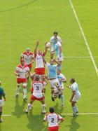 Derby basque