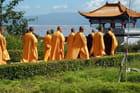 Des moines superbes