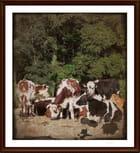 des vaches couleur d'automne