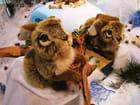 Deux petits lapins en peluche.