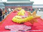 Dragon de fleurs