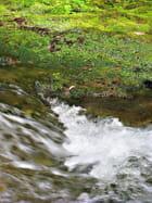 Eaux de rivière