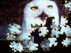 Écran de veille puzzle