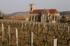 Eglise de Fuissé entourée de vignes