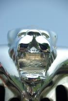 Emblème du lion Peugeot