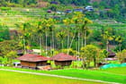 En pays Ifugao