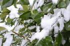 En plein hiver