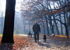 En promenade