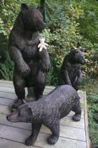 Encore l'ours voyageur