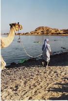 Enfant & chameau