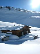 Enfoui sous la neige