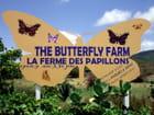 Entrée de la Ferme des Papillons