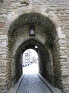 Entrée de la Vieille ville (6) Porte St.Malo