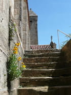 Escalier Eglise Bois Ste Marie