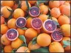 Etalage d'oranges sanguines