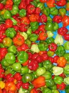 Etalage de piments au marché