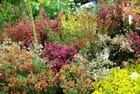 Evreux Côté Jardin - Salon des plantes