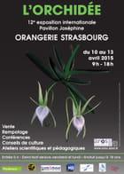 Exposition Internationale et Vente d'Orchidées à Strasbourg