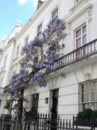 Façade (Rue de Londres) (2)