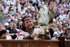 Fauconnerie : un aigle et son dresseur