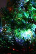 Fééries de Noël (3)