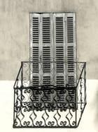 Fenêtre en cage