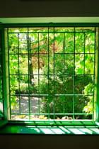 Fenêtre sur cour !!!