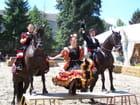 Festival equestre de TARBES.