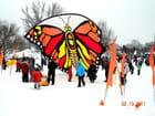 Festivités hivernales - Ottawa